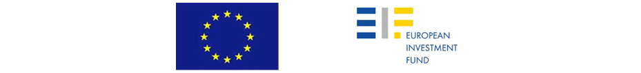 Logo Fondul European de Investitii si Banca Europeana de Investitii