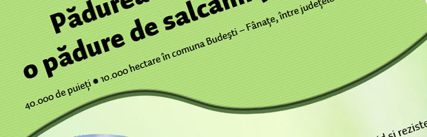 Infografic: Plantarea Padurii Transilvania, pentru a marca
