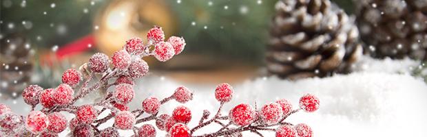 Programul BT in perioada sarbatorilor de iarna