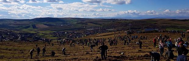 Peste 1.500 de voluntari, la plantarea Padurii Transilvania