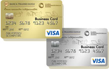 Visa Business Debit